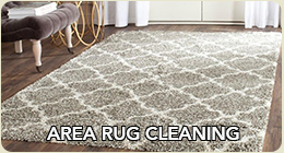 Area rug cleaning in Chicago