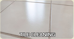 Tile and grout cleaning in Chicago