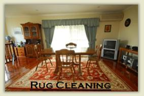 Area rug cleaning Chicago